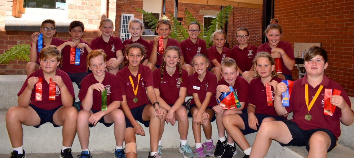Bendigo District Catholic Primary School Swimming Sports, 20th February